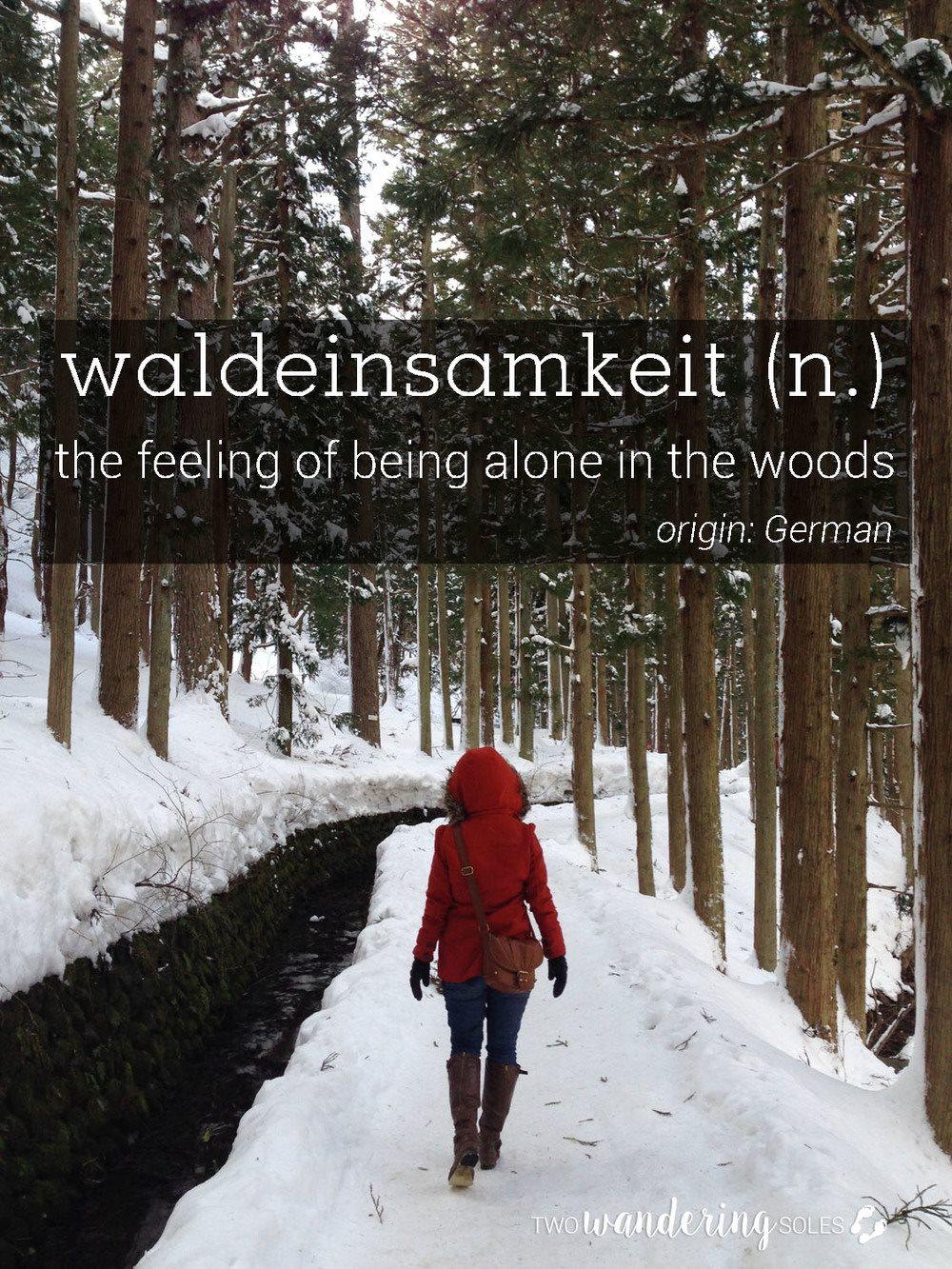 Waldeinsamkeit Awesome Travel Words