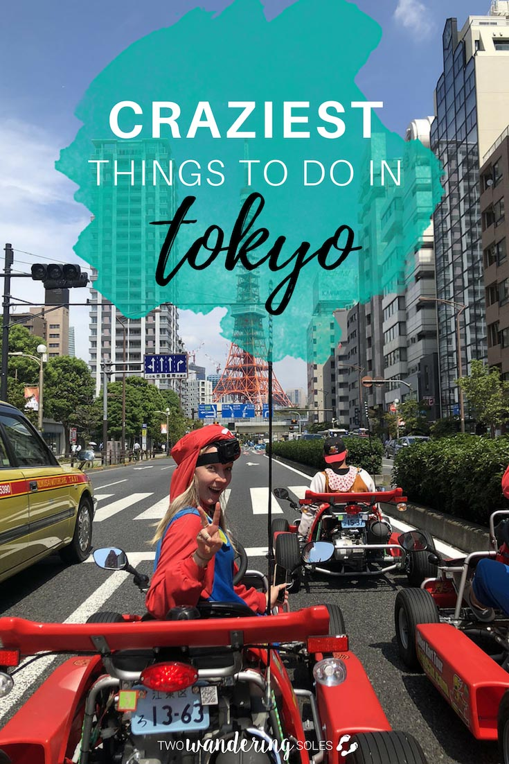 Craziest Things to Do in Tokyo Japan: A Complete Tokyo Travel Guide