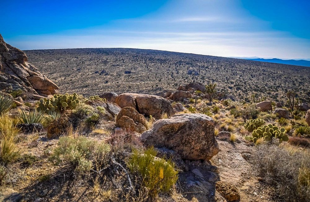 Best Desert Hikes in California: Teutonia Peak Trail Credit: We Who Roam