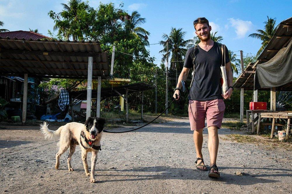Things to do in Koh Lanta Thailand Lanta Animal Welfare