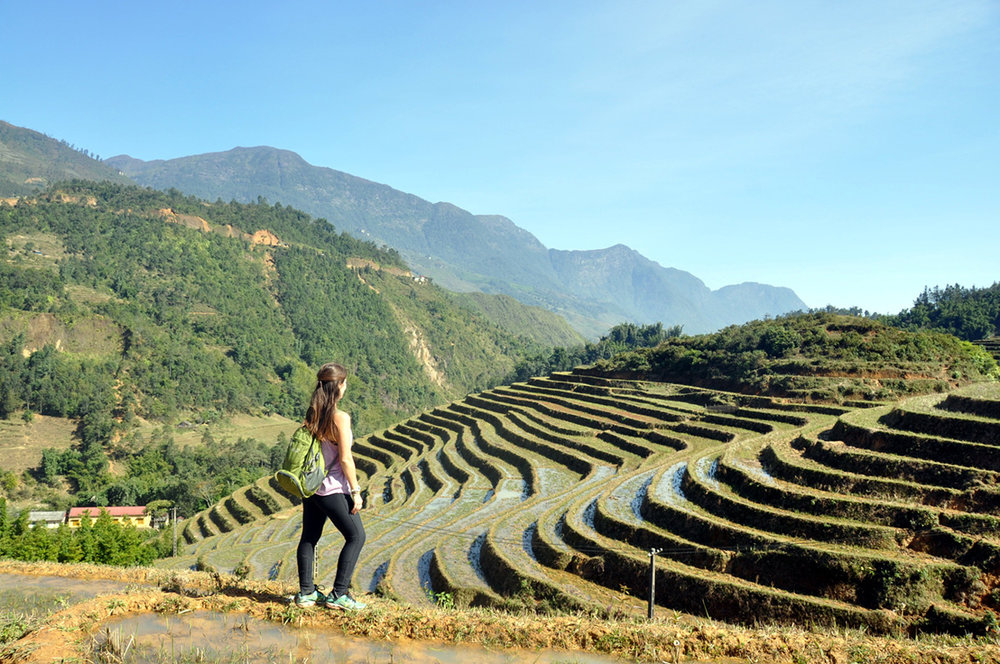 Vietnam Itinerary Sapa Rice Terraces
