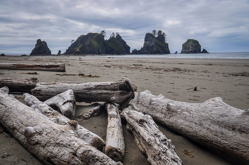 Best Things to Do in Washington State Shi Shi Beach