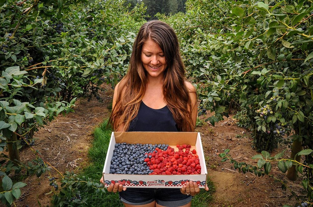 Best Things to Do in Washington State Bellingham Berry Picking