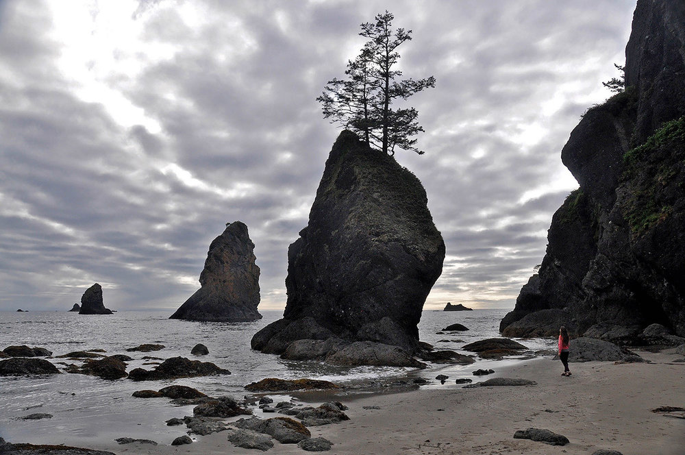 Best Things to Do in Washington State Shi Shi Beach Stacks