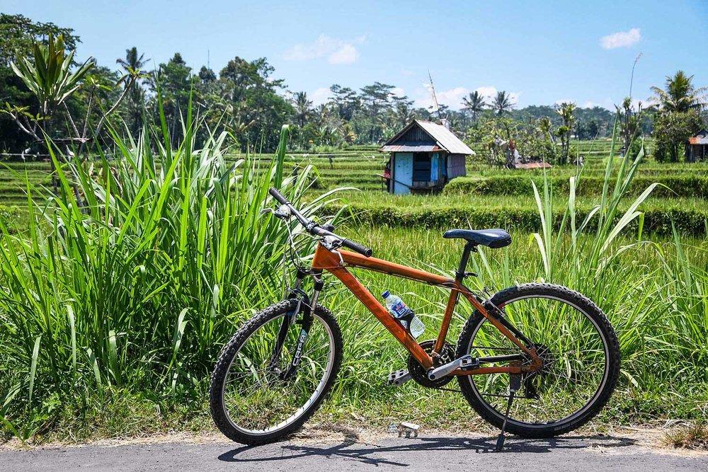 Things to do in Bali Countryside Bike Tour