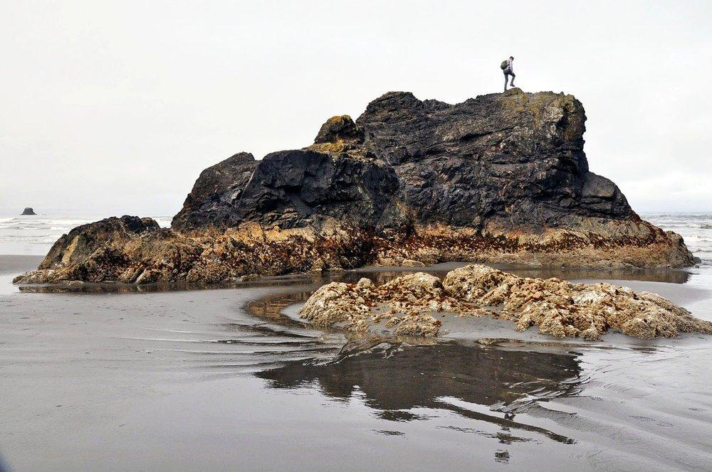 Sea Stack Olympic Peninsula
