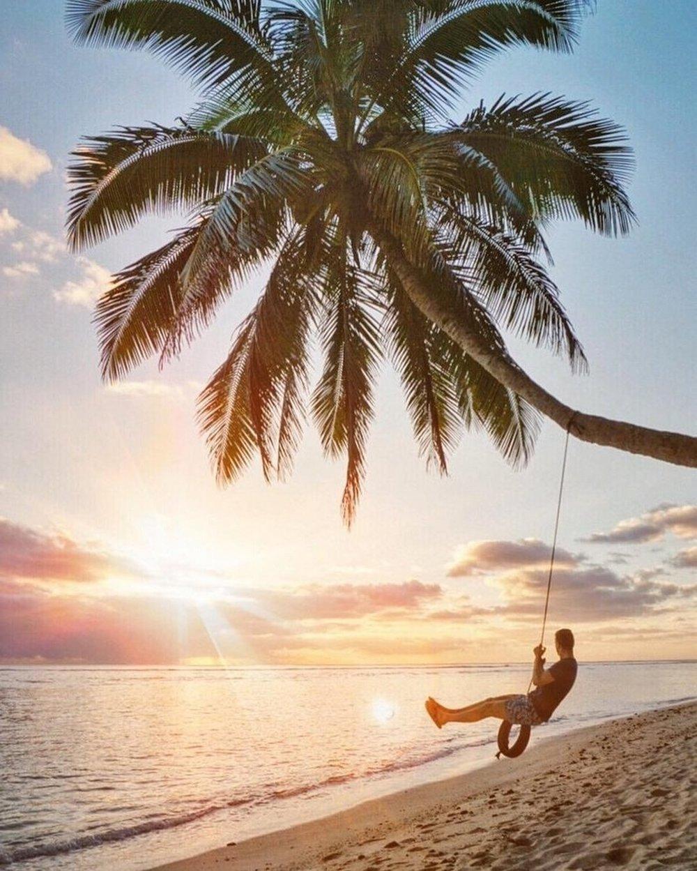 Photography tips palm tree sunset Simon Hird