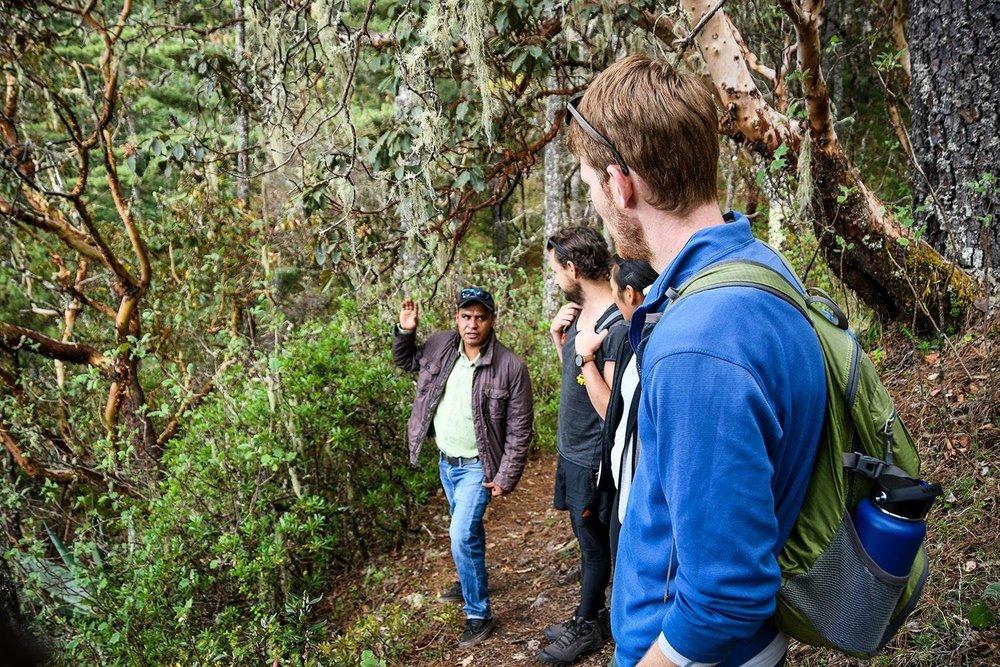 Hiking in Oaxaca Sierra Norte Villages Local Guide