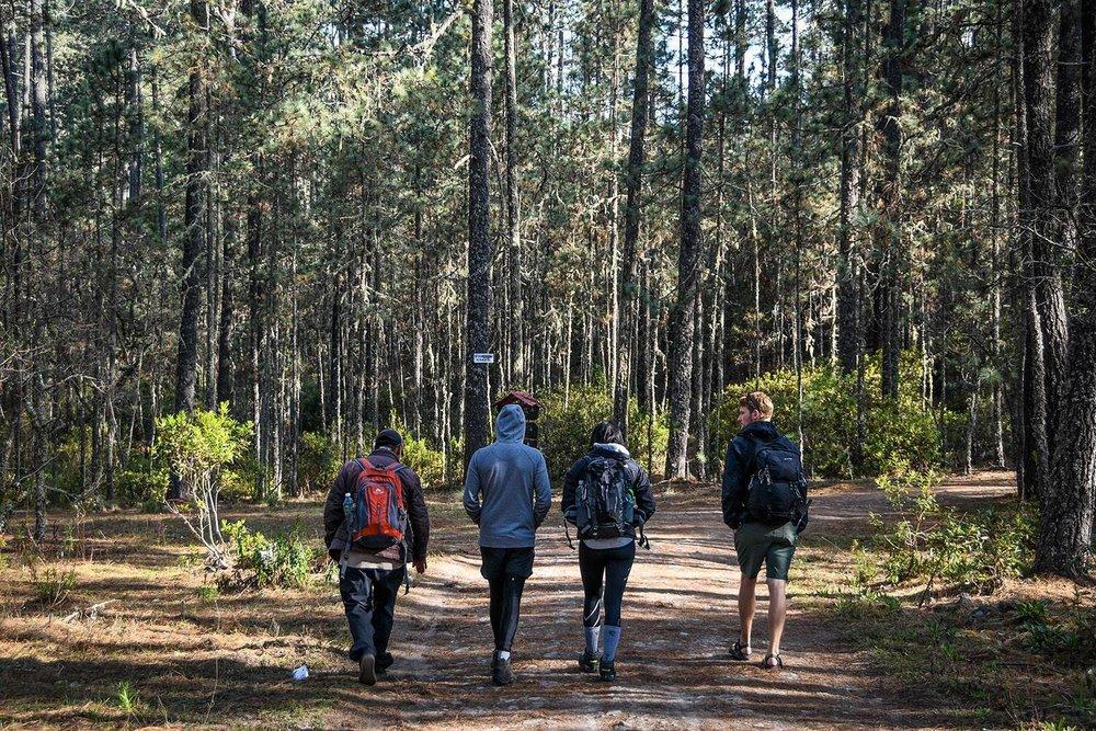 Hiking in Oaxaca's Sierra Norte Trail hiking