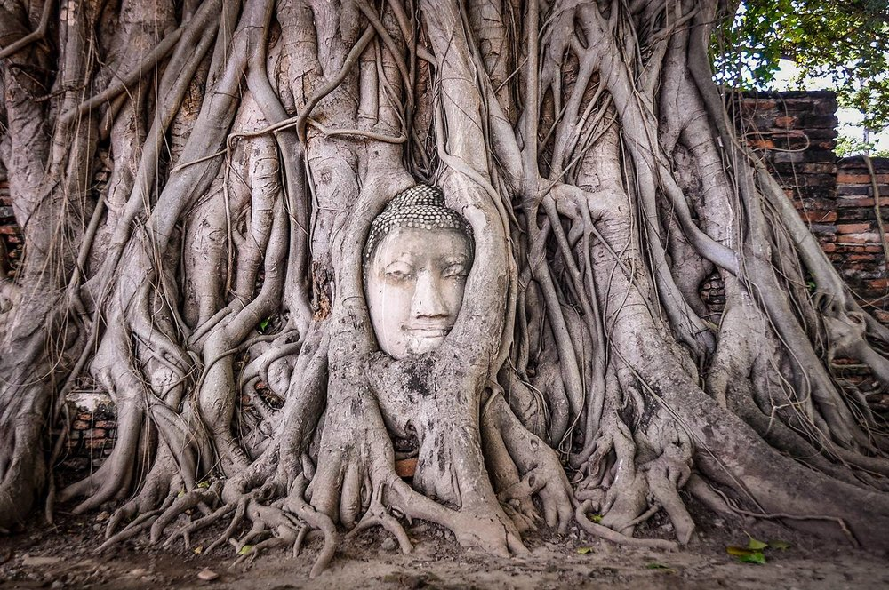 Sustainable Travel Thailand Tips Ayutthaya