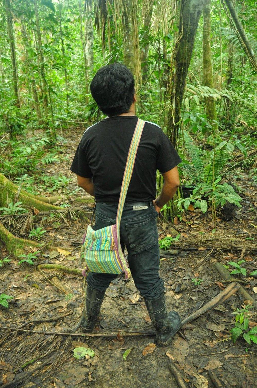 Madidi Jungle Ecolodge Amazon Forest Bolivia