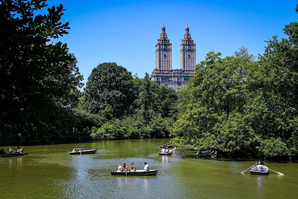 Things to Do in New York City Central Park