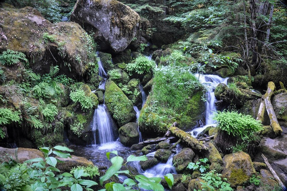 Things to Do in Oregon Watson Falls Umpqua National Forest