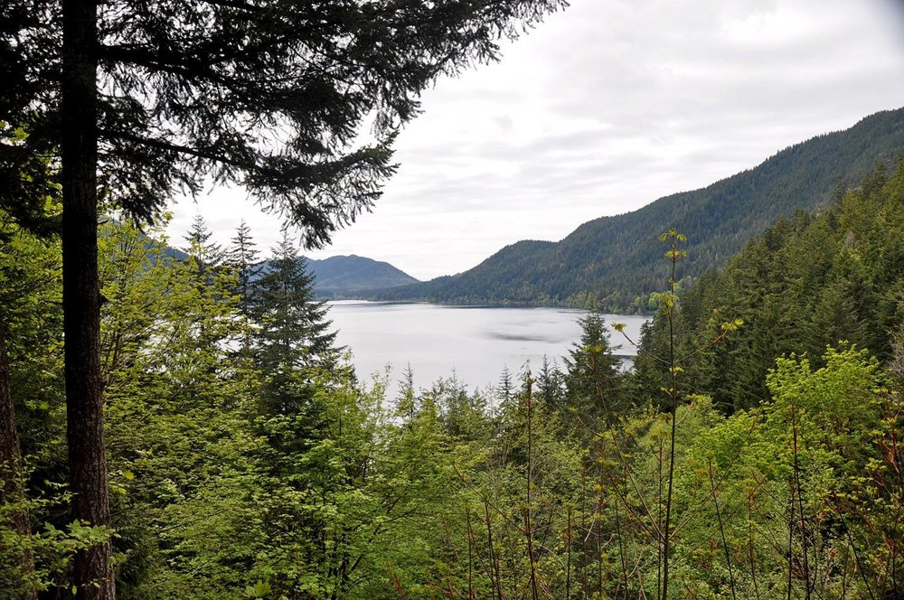Lake Crescent Olympic Peninsula