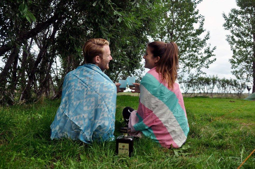Alcohol Iceland Budget