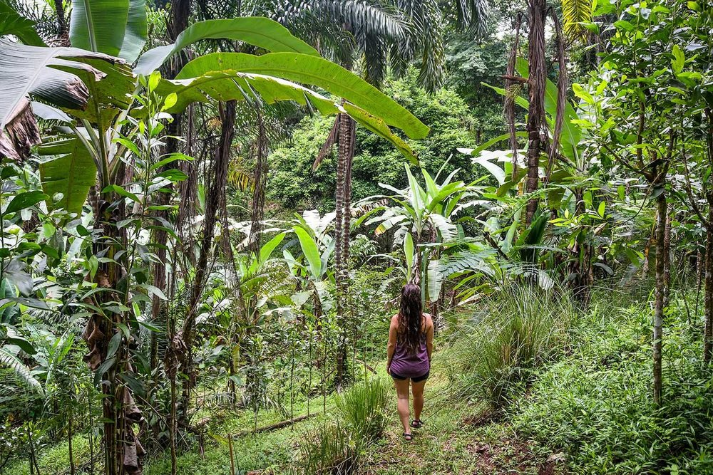 Things to Do in Costa Rica: Go Hiking