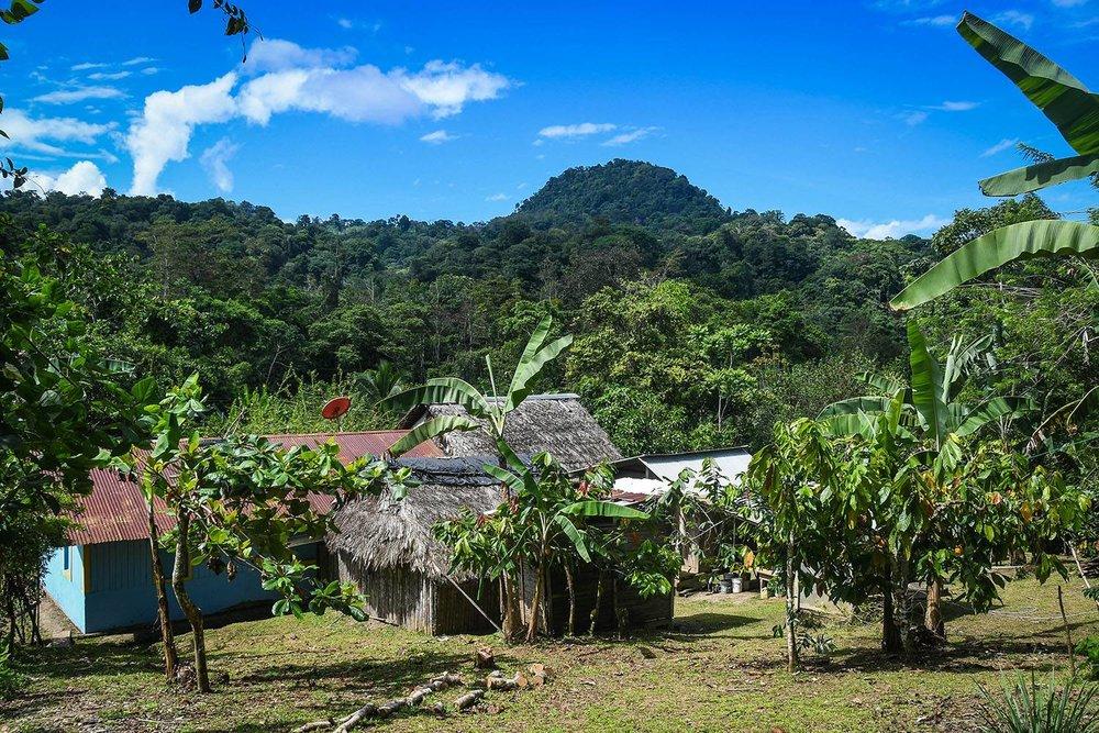 Bri Bri Indigenous Village Tour