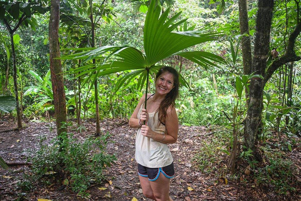 Bri Bri Indigenous Village Tour Natural Umbrella