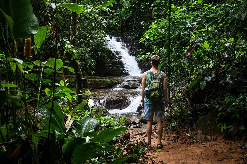 Oxygen Jungle Villas Private Waterfall on Site