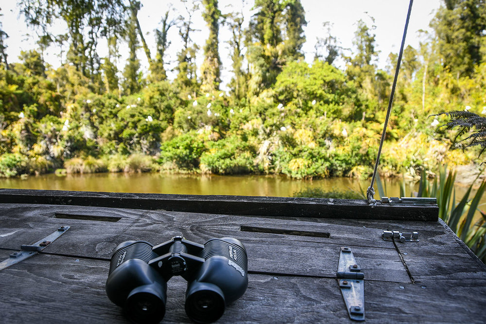 Things to Do in West Coast NZ White Heron Kokotu Viewing Platform