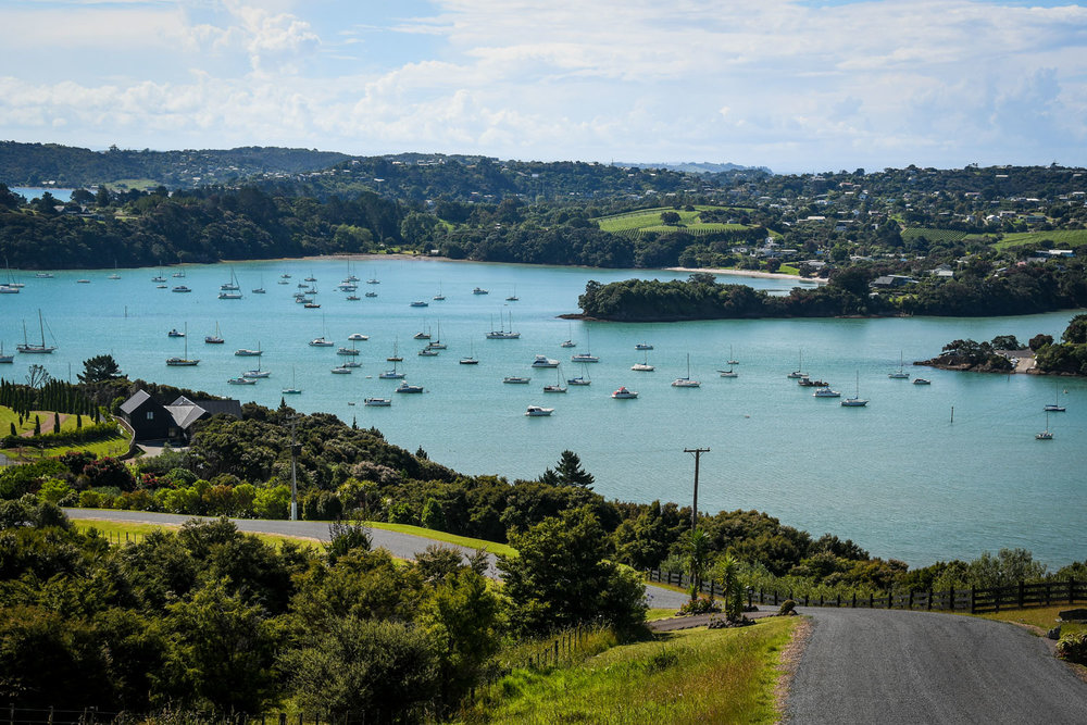 Top Things to Do in New Zealand Waiheke Island Lookout