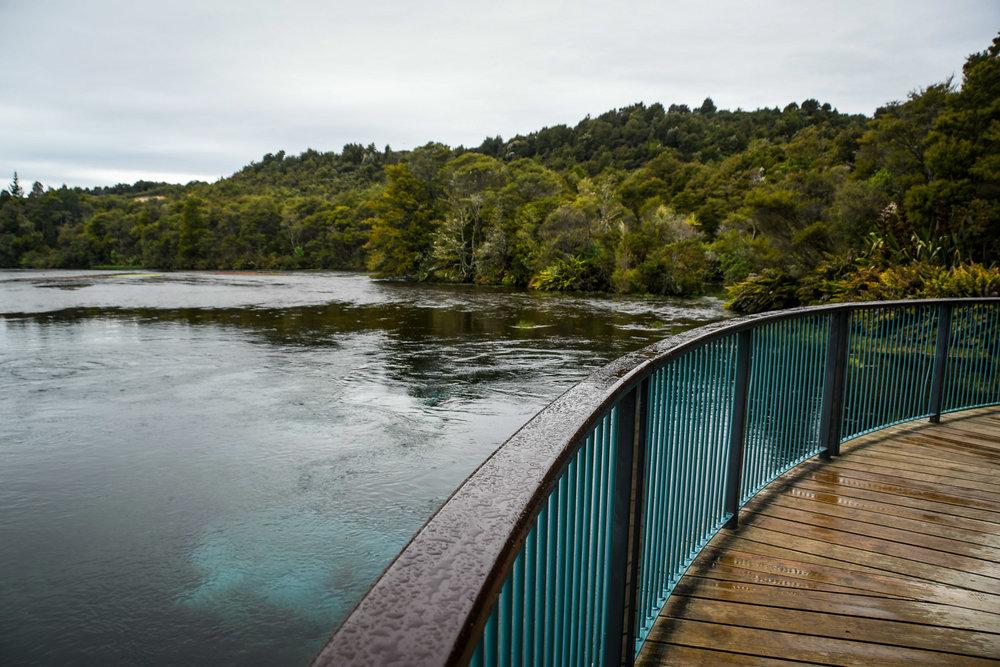 South Island New Zealand Itinerary Road Trip Te Waikoropupū Springs Raining