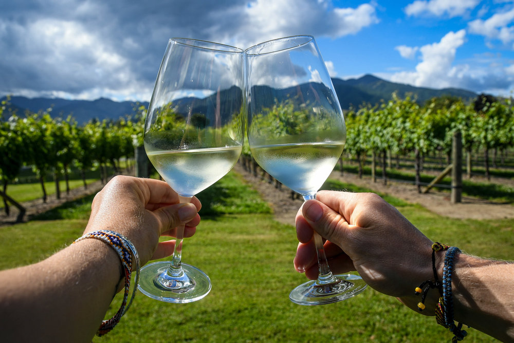 New Zealand Budget Travel Drink Wine