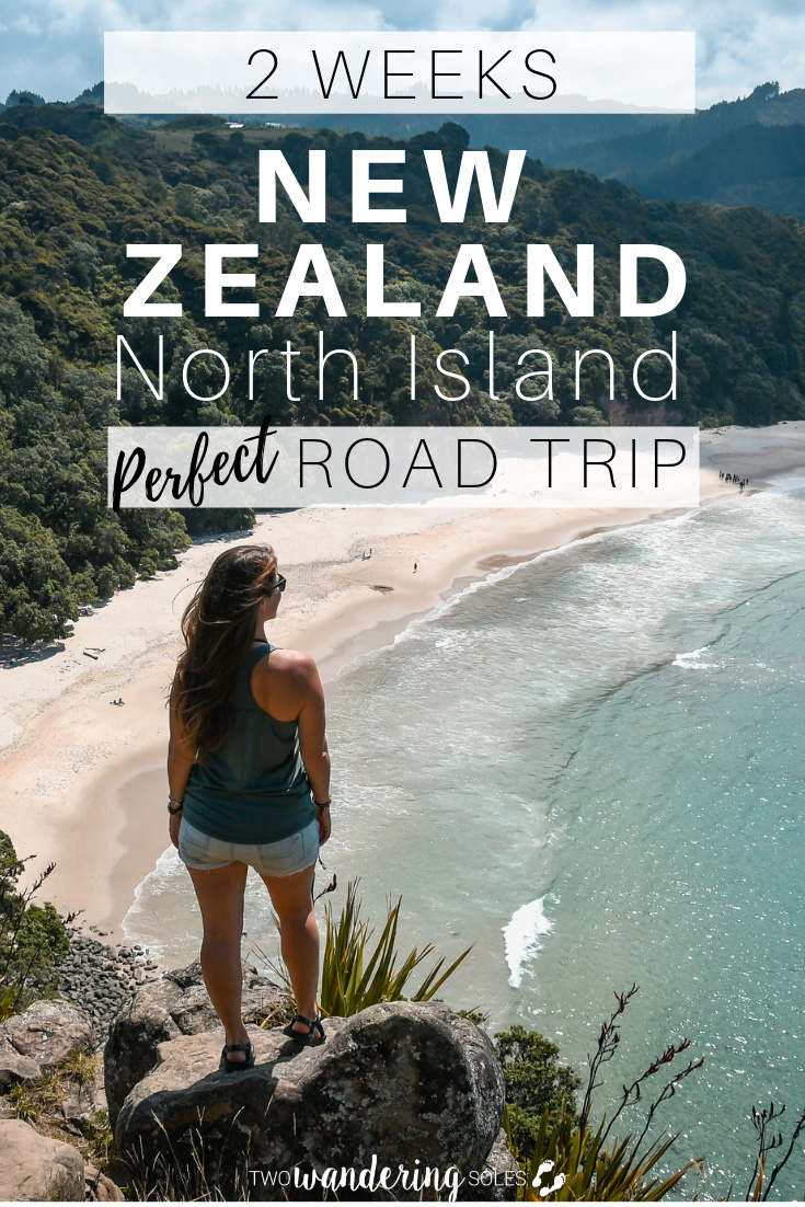 2 Weeks in New Zealand's North Island: The Perfect Road Trip from Auckland to Wellington