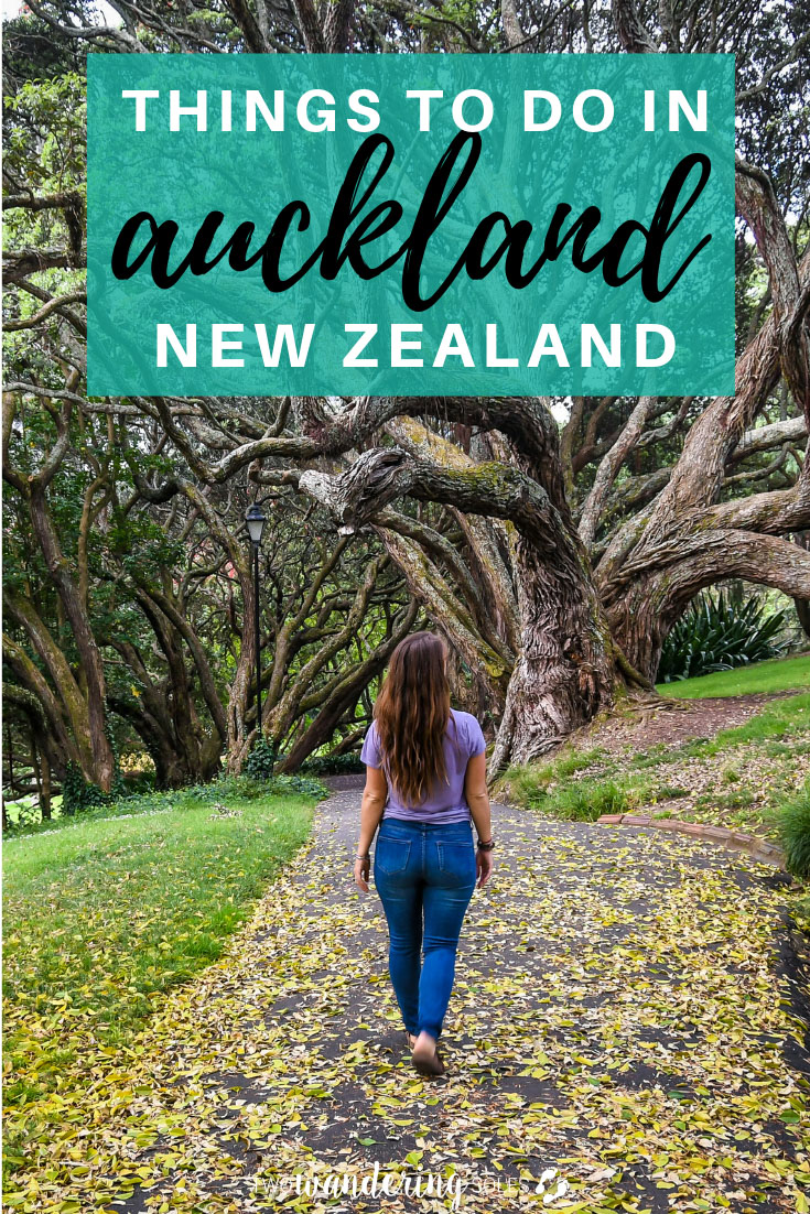 Free and Cheap Things to Do in Auckland in Albert Park