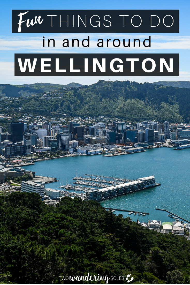 Fun Things to Do in and around Wellington, New Zealand