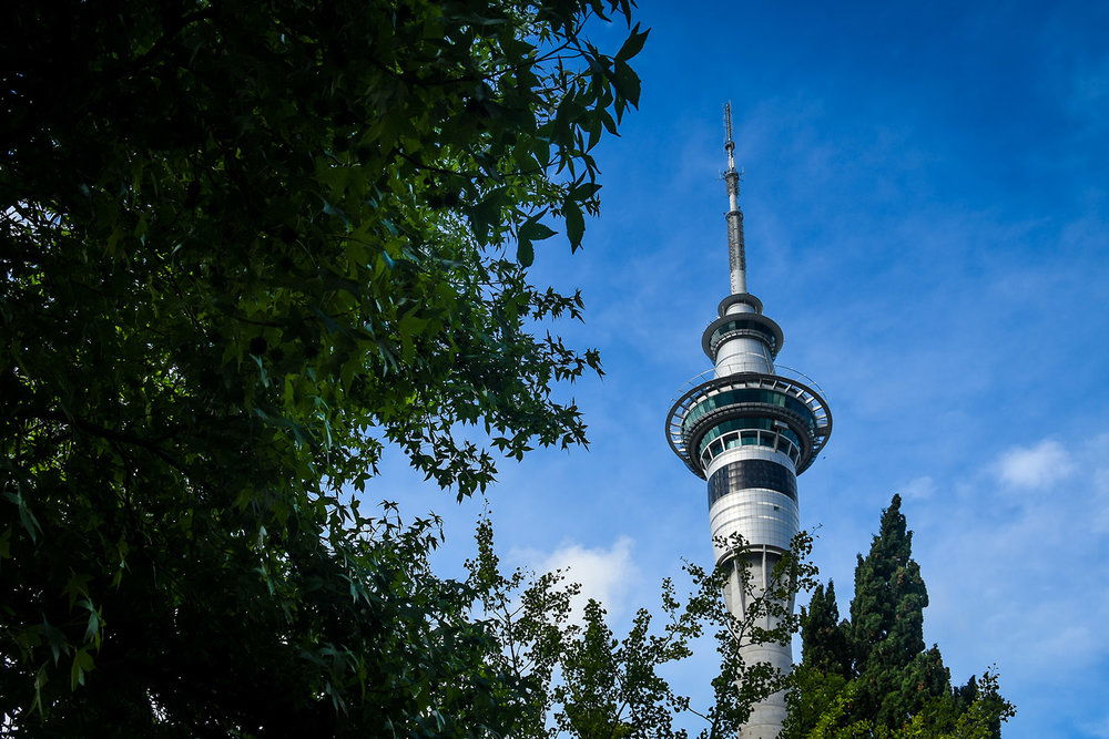 Things to Do in Auckland New Zealand Sky Tower