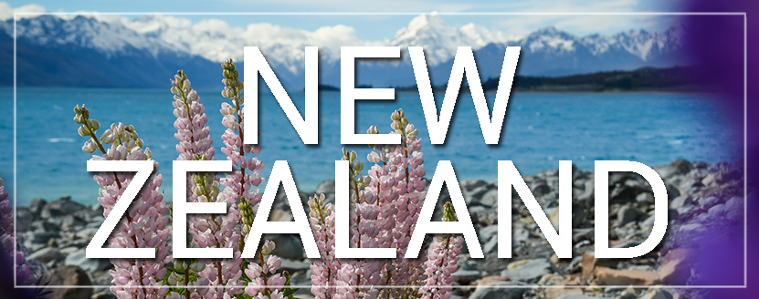 New Zealand Lupins and Lake Tekapo