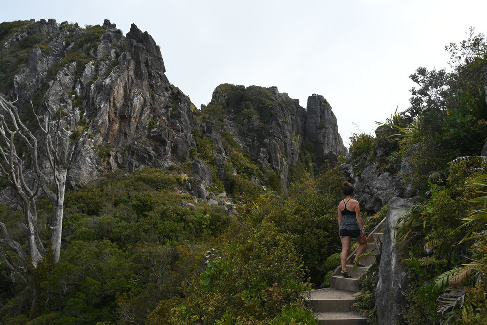 North Island New Zealand Itinerary Pinnacles Path Hike