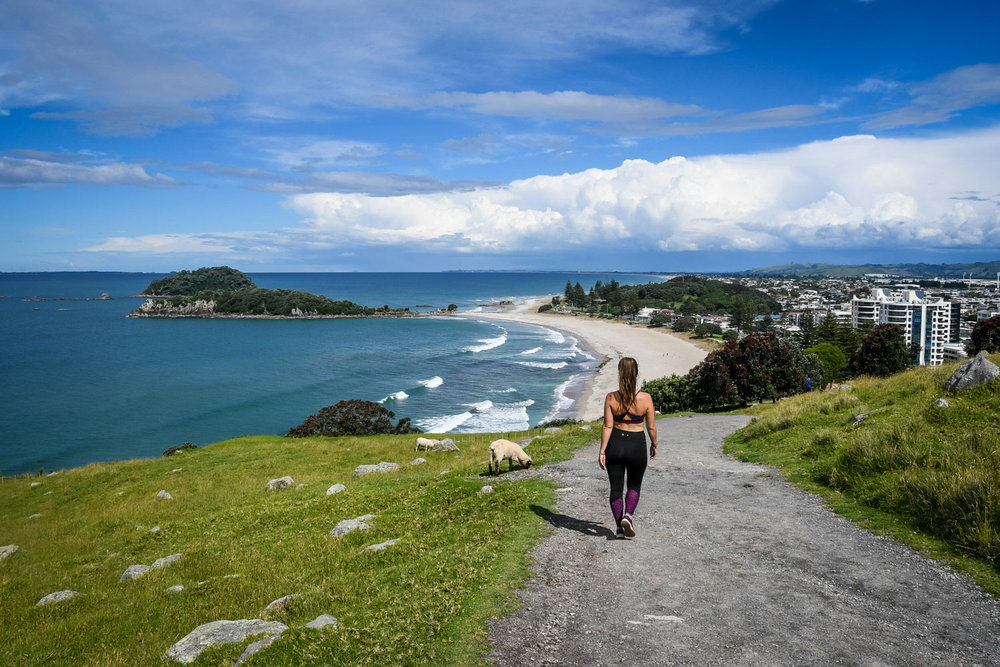 North Island New Zealand Road Trip Mount Maunganui Hike