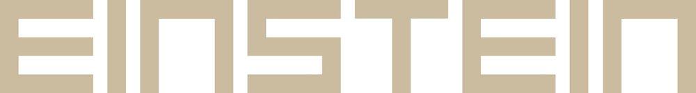 logo_einstein