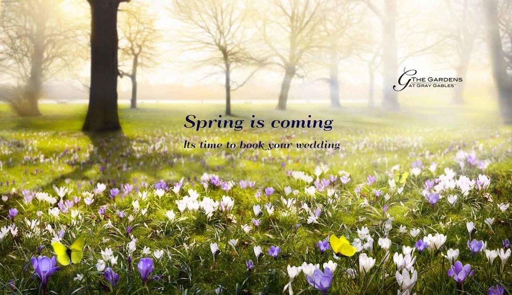 SpringGG.jpg