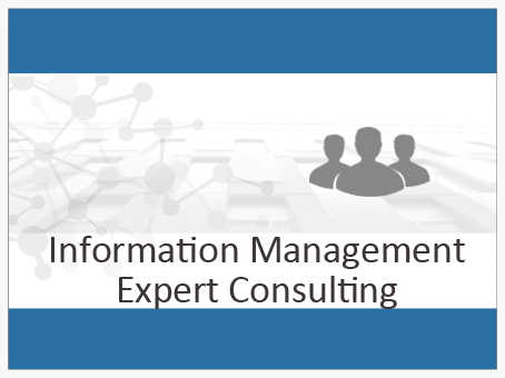 information-management-expert-consulting