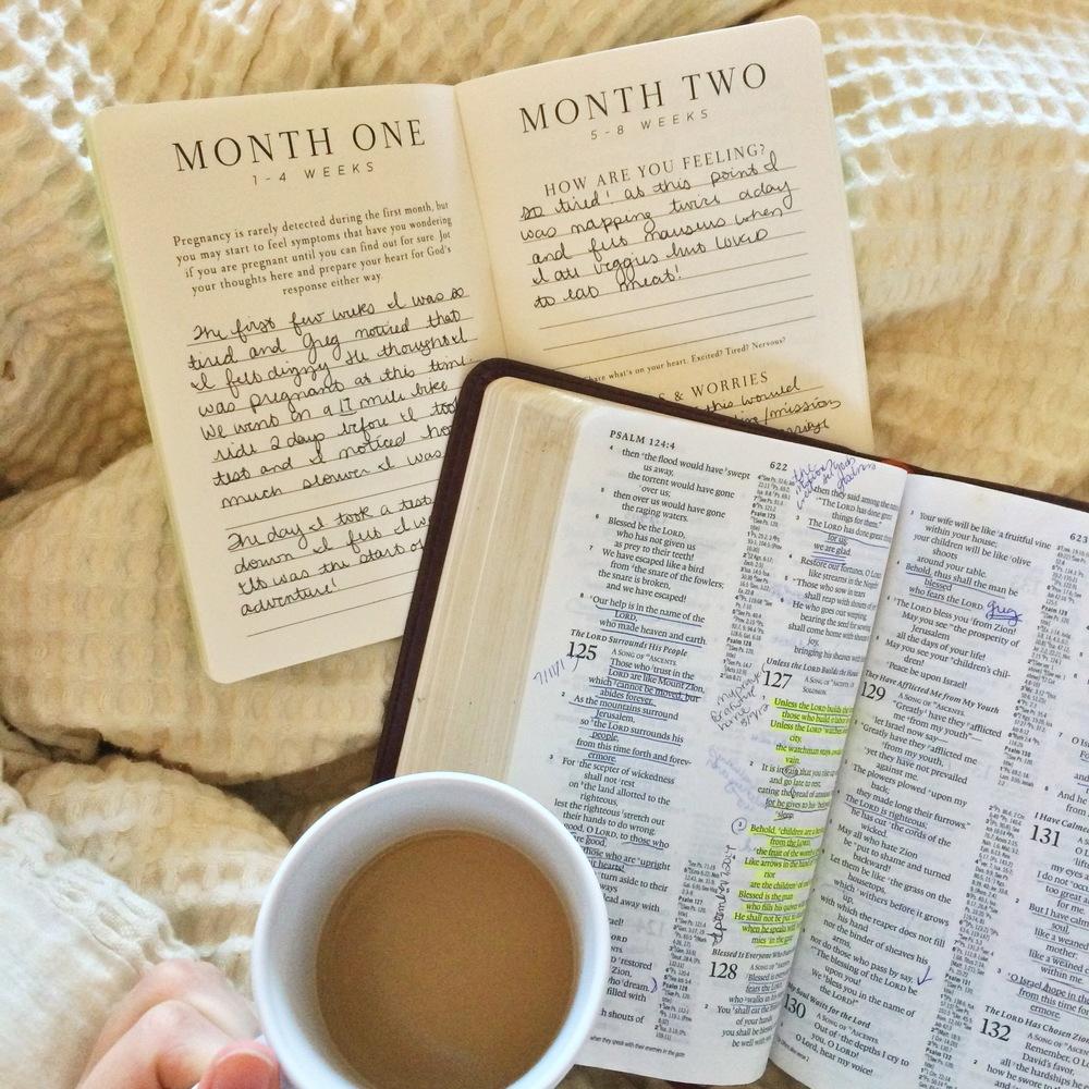 VMP Prayer Journal