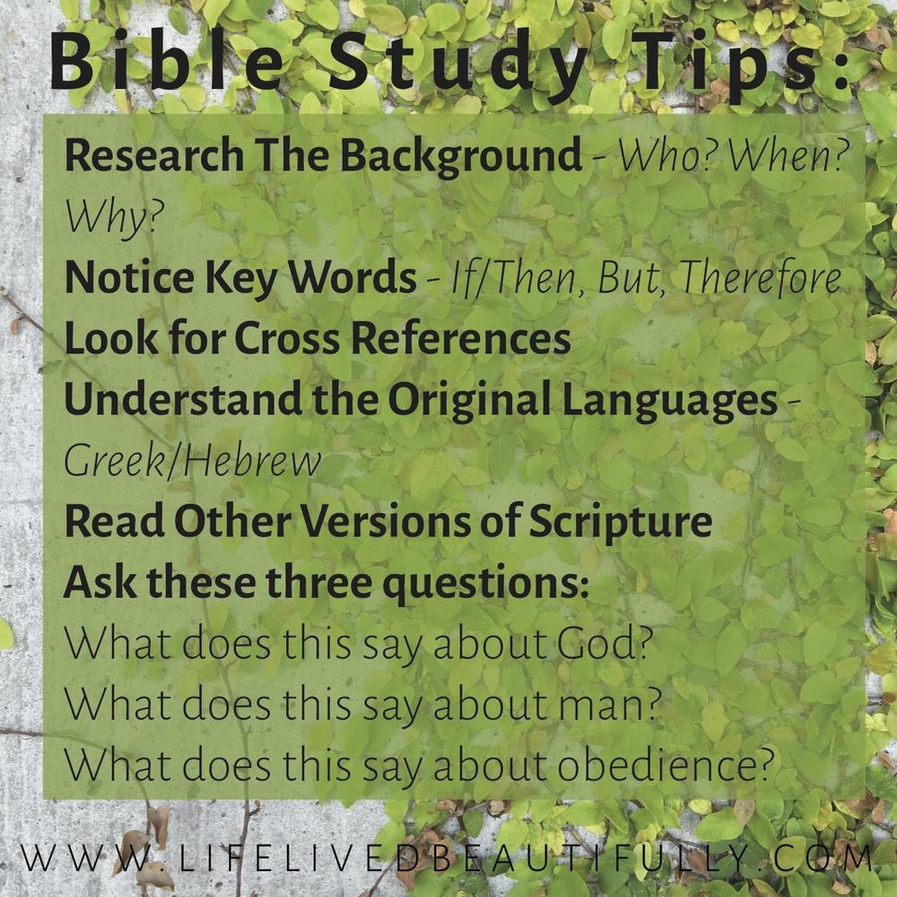 Study The Bible Tips_LLB