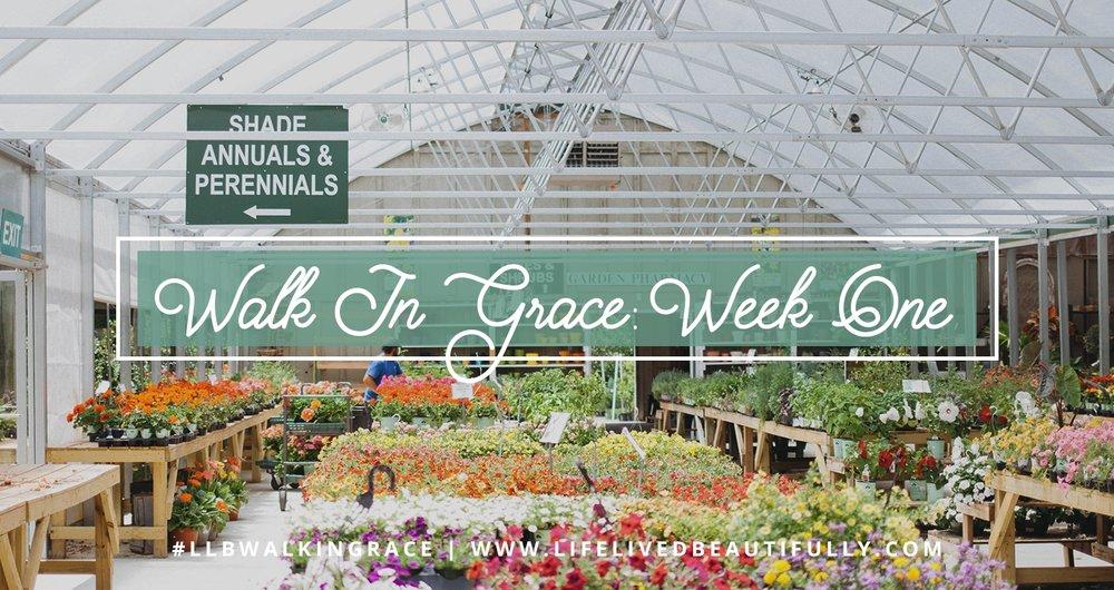 WIG_Week 1 Header.jpg