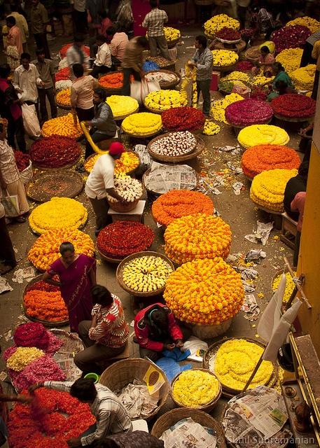 Bangalore5.jpg