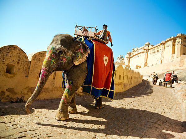 Jaipur6.jpg
