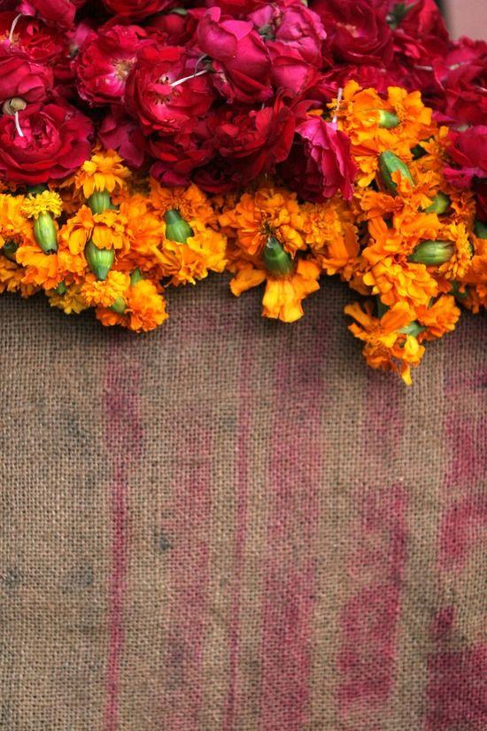 Jaipur5.jpg