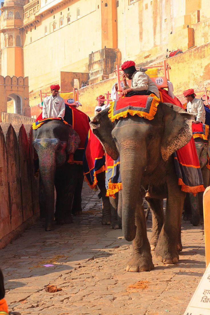 Jaipur7.jpg