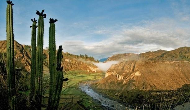 Arequipa1.jpg