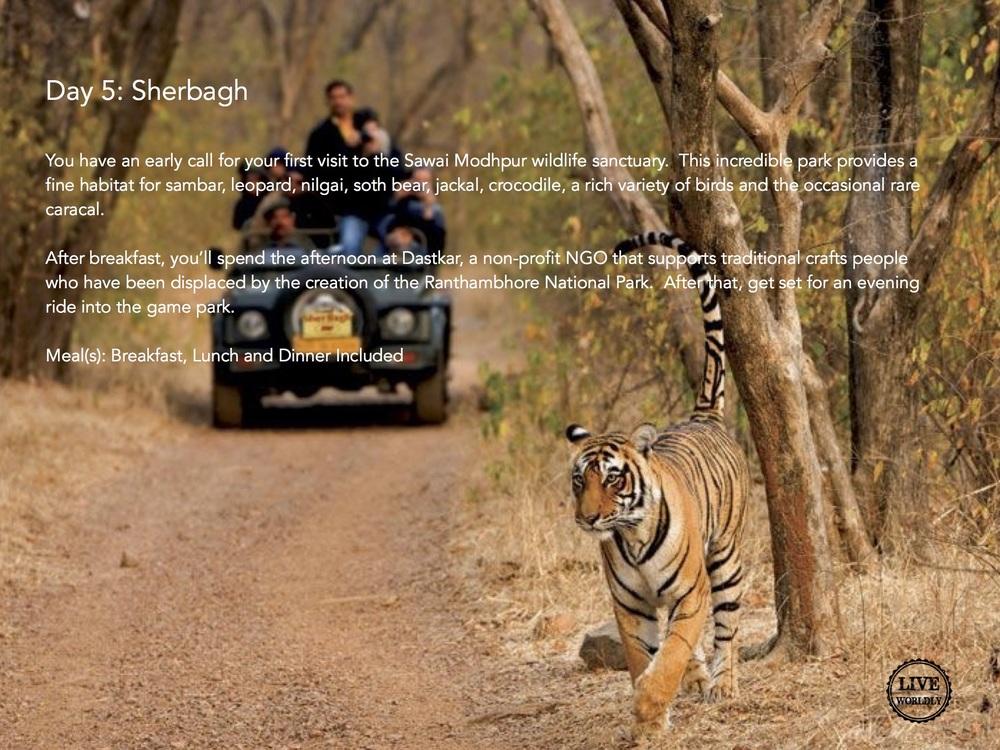 India Itinerary6.jpg