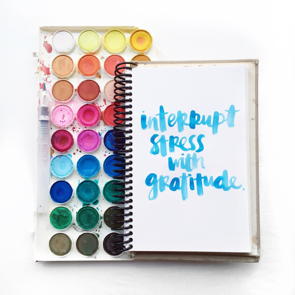 Interrupt stress with gratitude scripted by Amy Tangerine