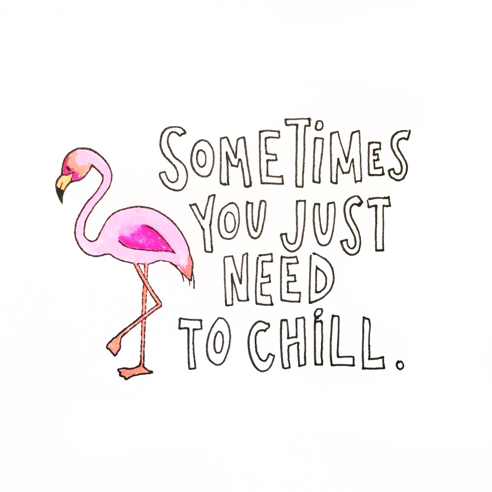 A good reminder & flamingo by amy tangerine