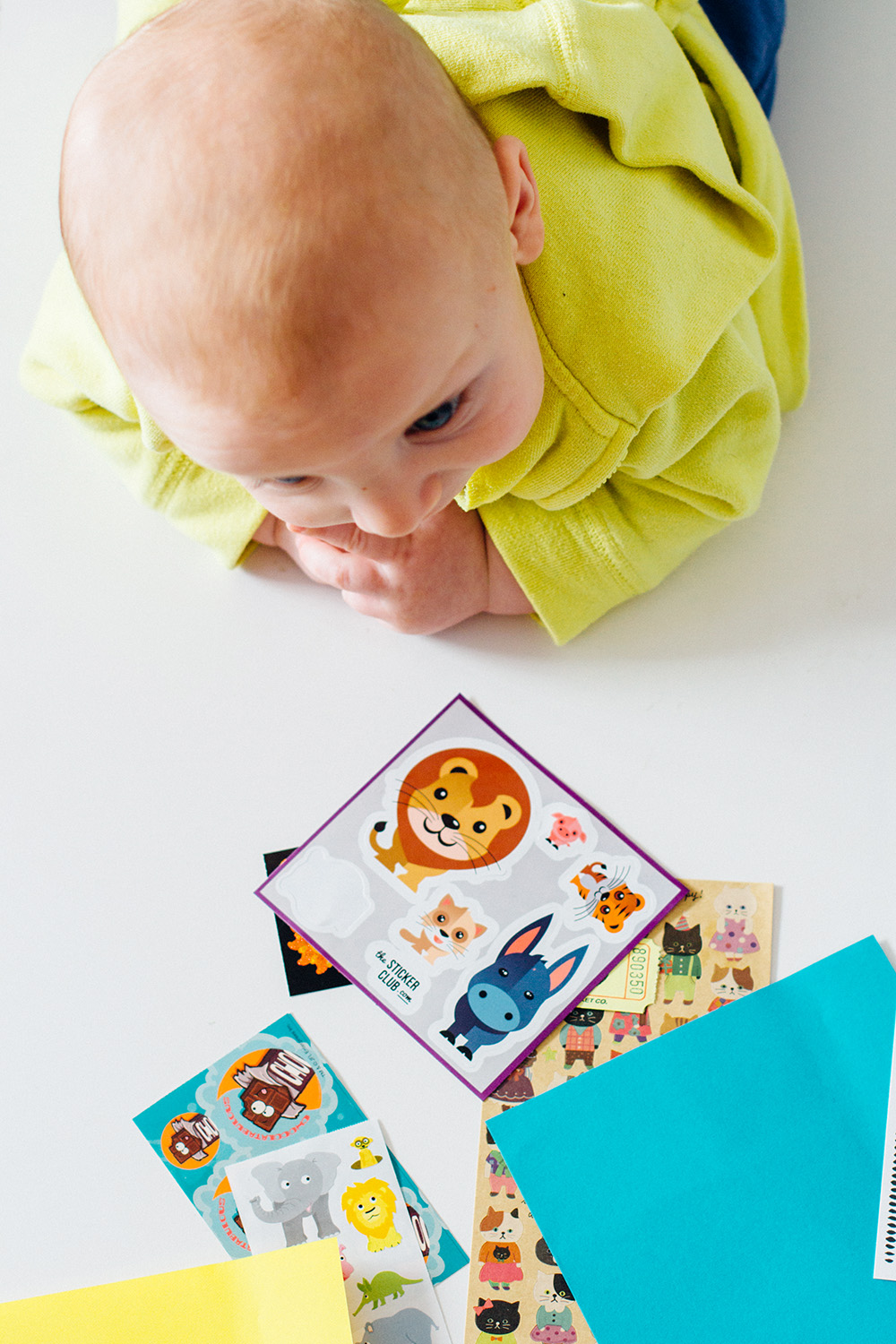 Pipsticks Sticker Subscription | Amy Tangerine