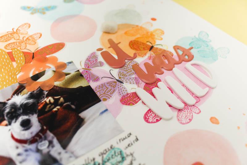 Zinia-AmyTan-February-WatercolorsandButterflies-03.jpg